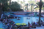 Thousands of my closest friends went to the pool party