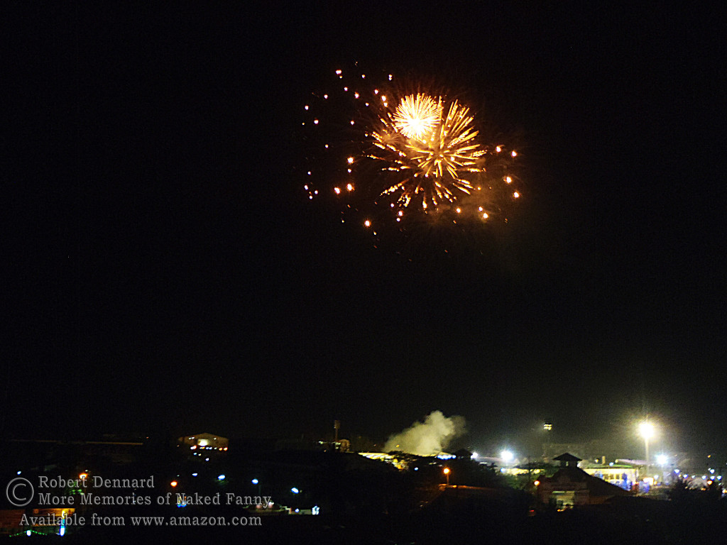 This shot of the fireworks was taken from the balcony of my room at the Orchid Hotel.
