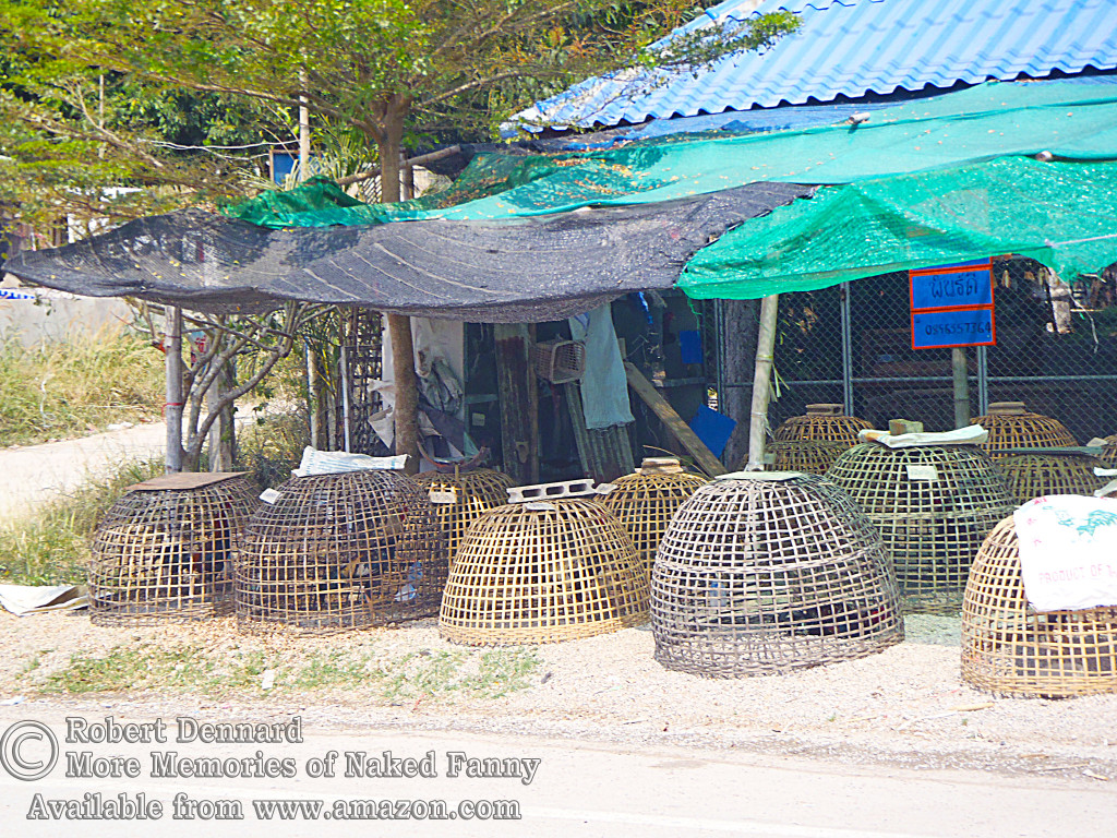 If you look very carefully you can just make out that there are roosters inside each of the wicker baskets. I don't know if they were for rent or for sale.
