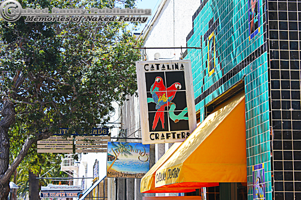 There are boutique type shops all along the Avalon bay.